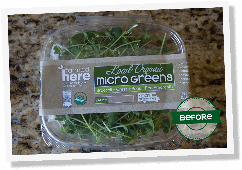 dtd farmedhere microgreens before