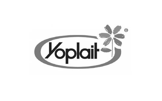 Yoplait logo image
