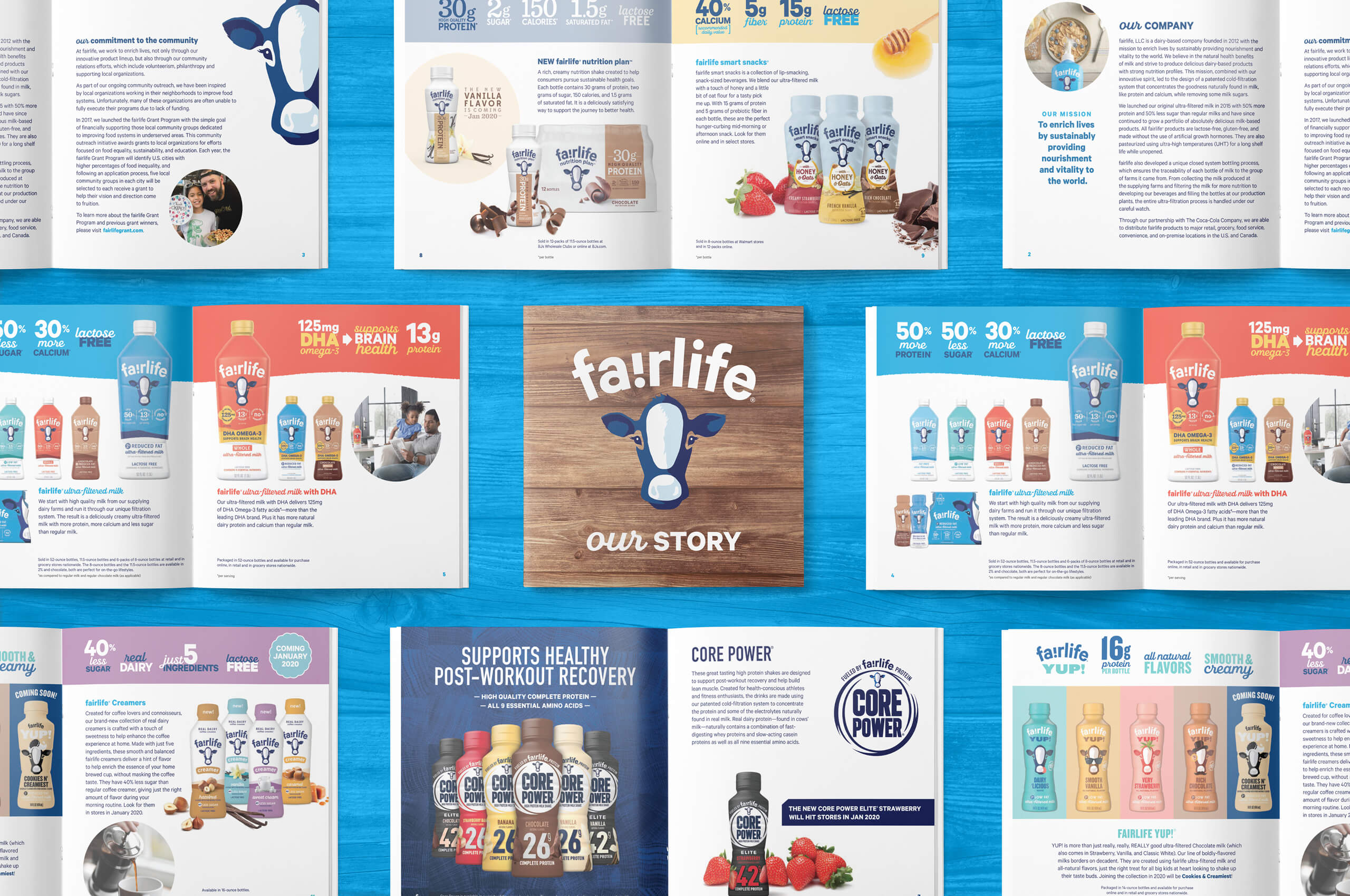 group shot of a fairlife masterbrand brochure with brown wood cover and multiple inside spreads on a blue wood background